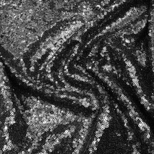 Sequin Anterist Grey